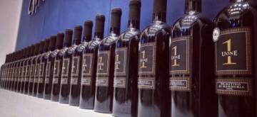 葡萄酒代理加盟商怎样开拓冲击中低端市场?
